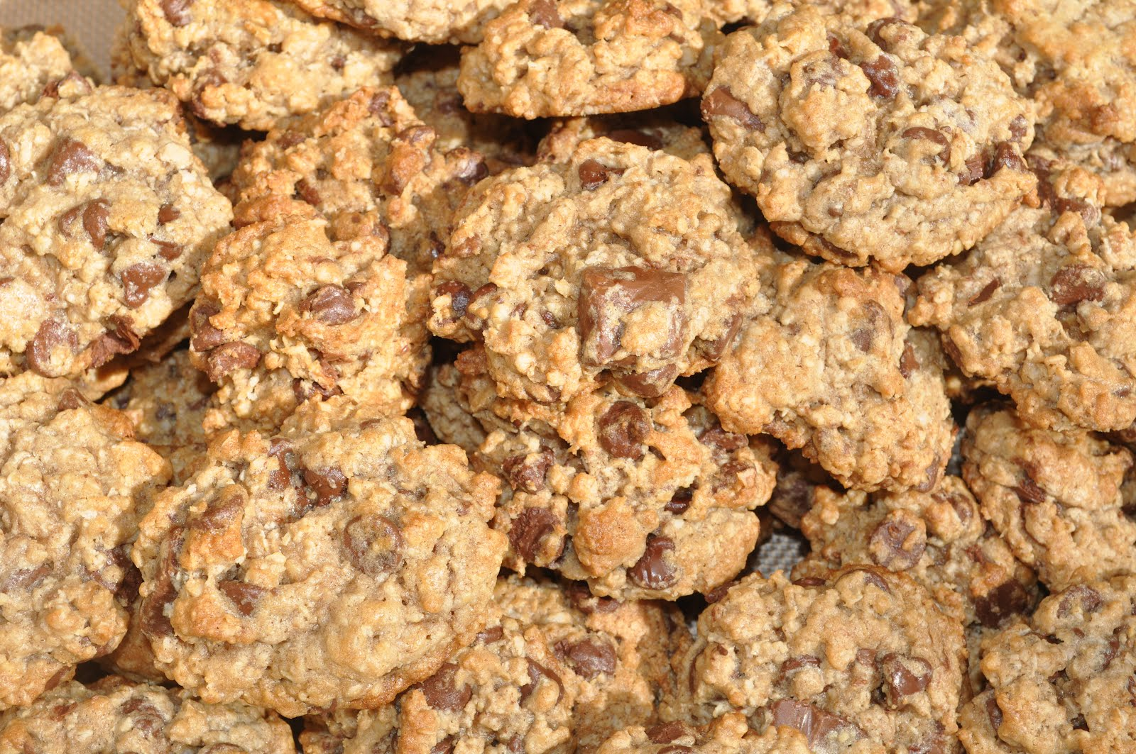 World's Best Oatmeal Chocolate Chip Cookies | Suz Daily