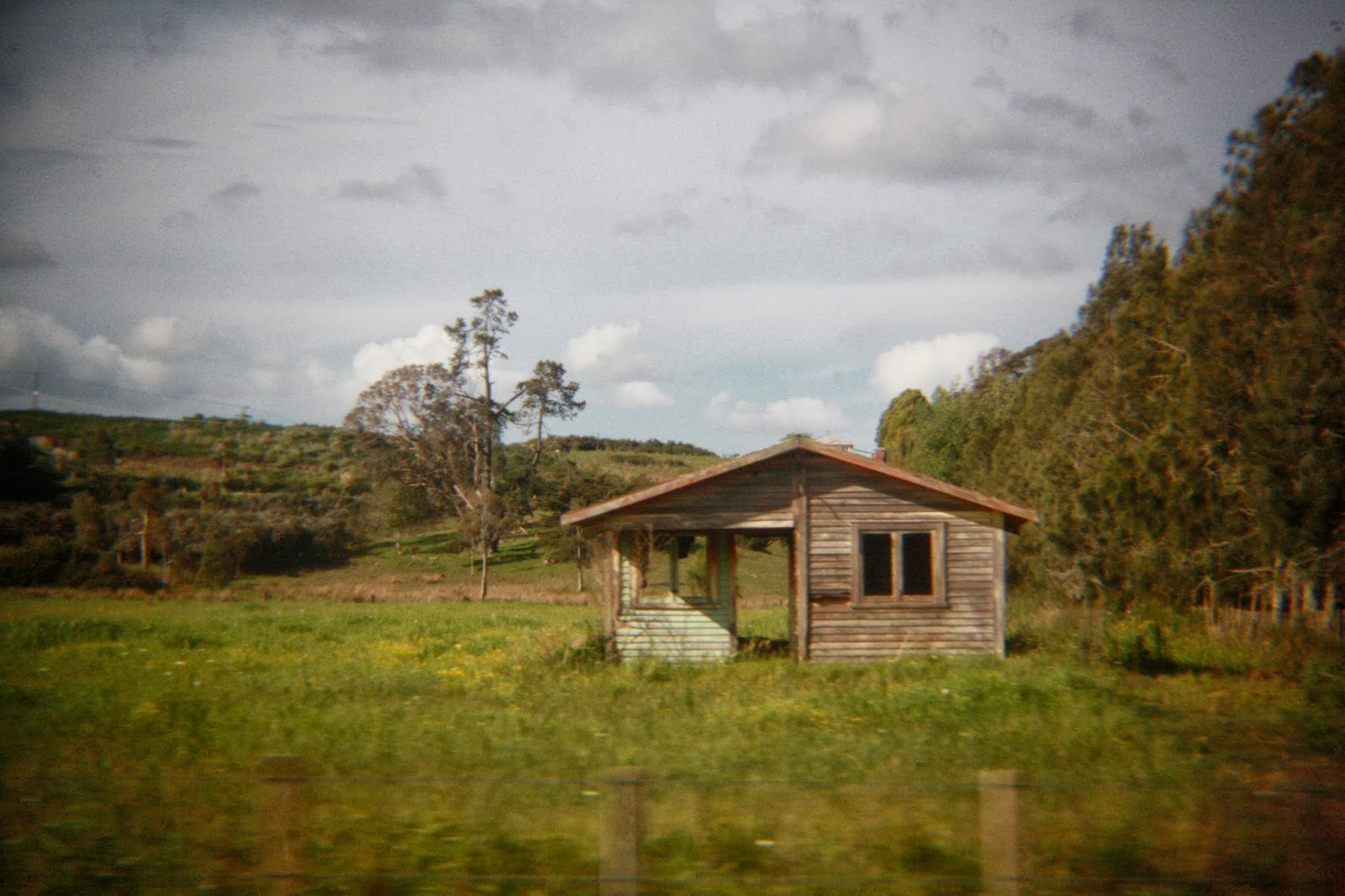 An abandoned home in a paddock. Both doors are gone; you can see right through it.