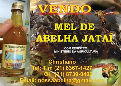 Mel de abelha Jatai