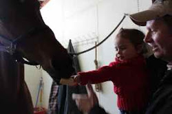 Sophia, my brave one.  She fed the horse right away.