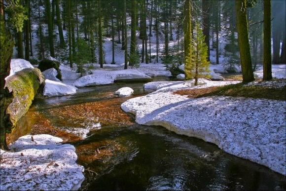 Весенние воды размыли зимние оковы