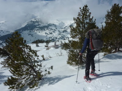 Snowshoeing with Spanish Highs Mountain Guides