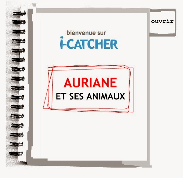 http://www.i-catcher-online.com/French/French0203-high.html