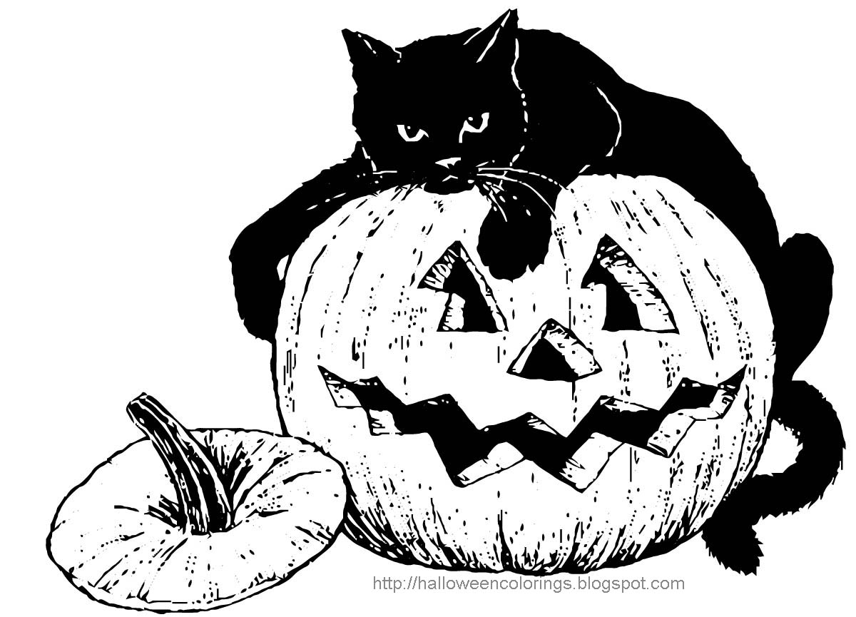 halloween colorings - Halloween Black Cat Coloring Pages