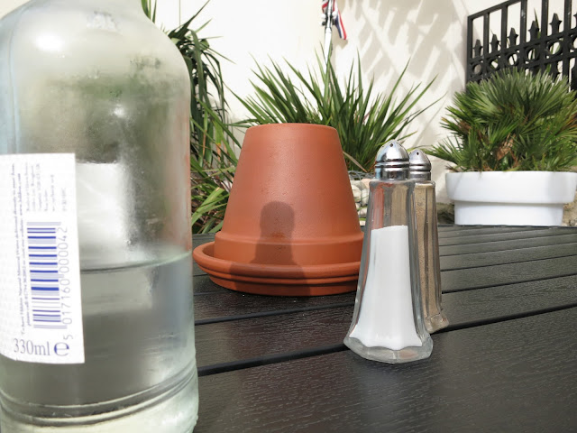 Table in pub garden with salt, pepper, flower pot and water.