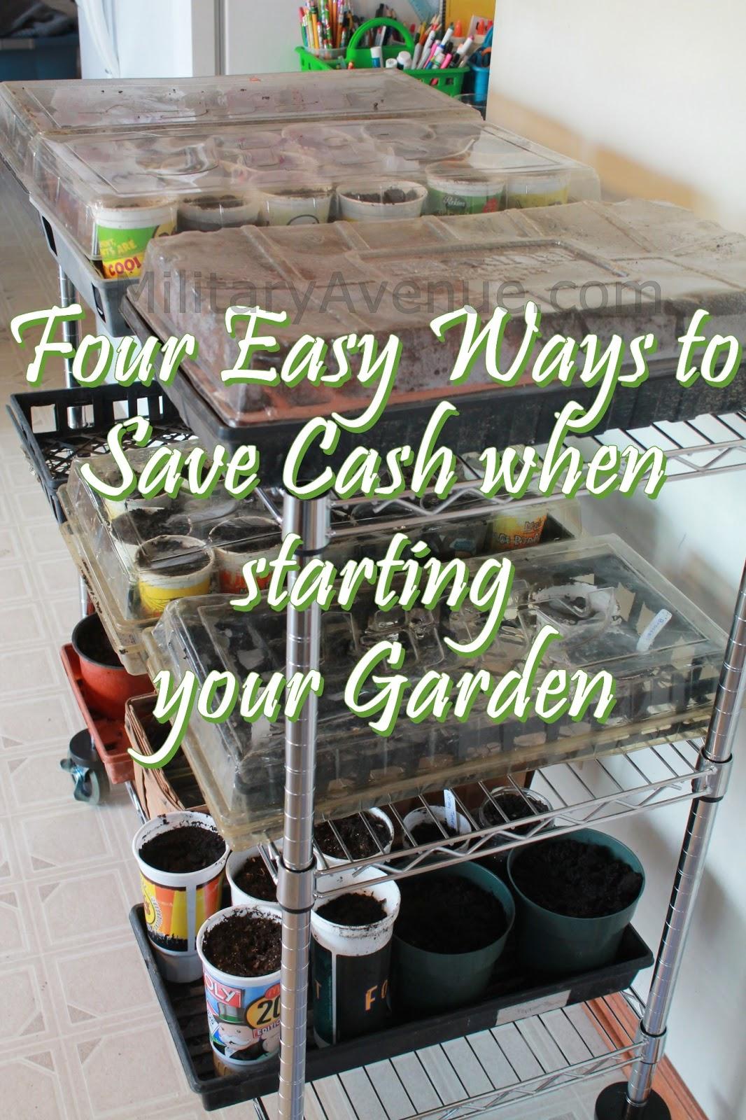 The military family mondays in my garden four easy ways to save money when starting your garden - Money saving tips in gardening ...