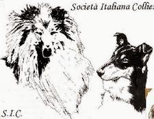 Società Italiana Collies