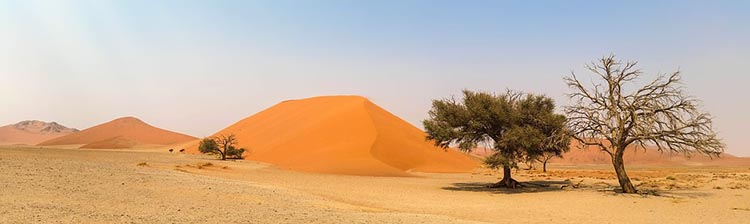 1001 Places I'd Like to Visit Before I Die #16 - Namibia 2