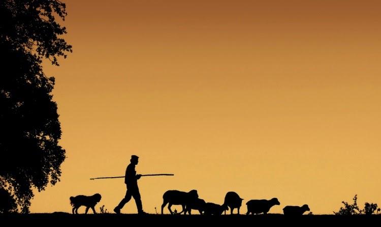 @andersonmenger: dez maneiras de ser um pastor melhor