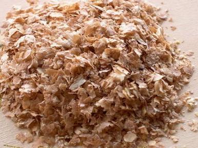 Mondo dei rettili allevamento camole della farina for Pellet per tartarughe