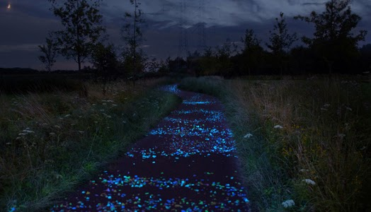 The first innovative bicycle path comprising thousands of sparkling stones designed by artist Daan Roosegaarde.
