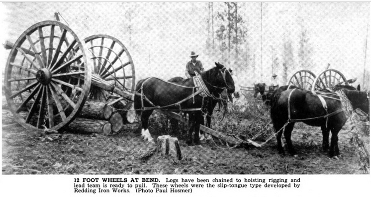Horses pulling logs on high wheels