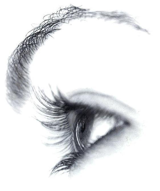 Line Drawing Eye : Welcome art line drawing eye