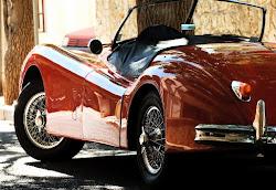 El vell del Jaguar
