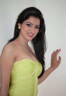 Richa Panai  Stills At Cine Maa Mahila Ads 2013 80.jpg