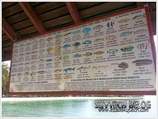 Ikan-ikan Di Taman Tunku Abdul Rahman