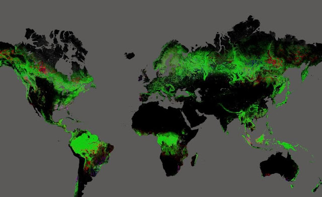 http://earthenginepartners.appspot.com/google.com/science-2013-global-forest