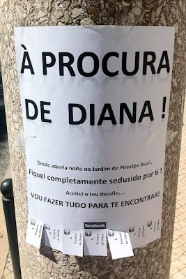 Rapaz apaixonado procura pela Diana
