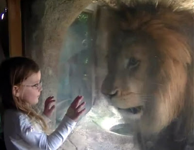the lion and the girl