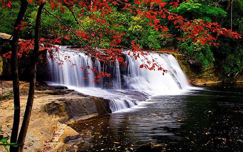 cascadas de agua para relajarse y disfrutar