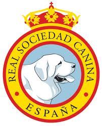 SOCIOS RSCE ESPAÑA