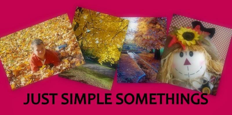JUST SIMPLE SOMETHINGS