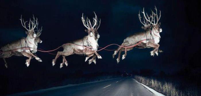 muy feliz navidad a todos y cuidado al volver a casa anuncian que puede haber renos por todos los caminos