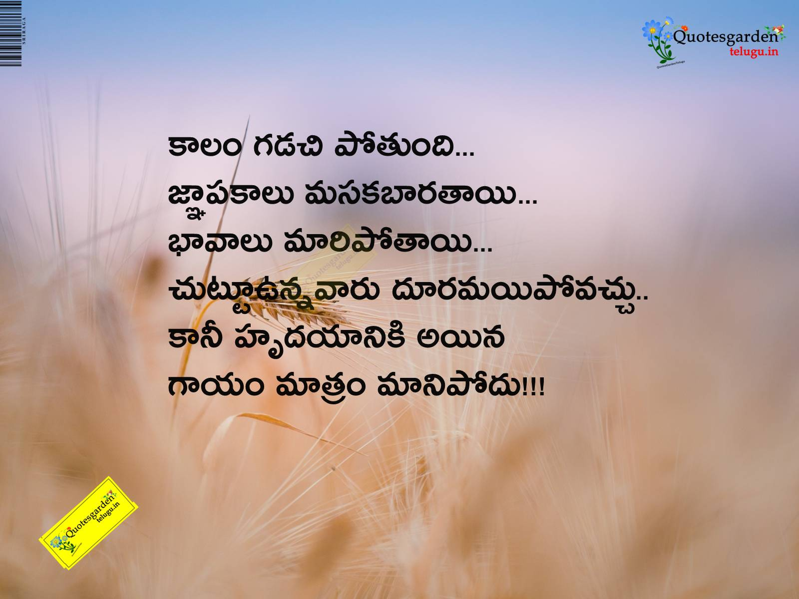 telugu best love and inspirational quotes with cool images