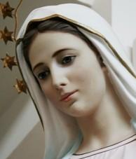 Maryjo, Matko i Królowo Pokoju, módl się za nami.
