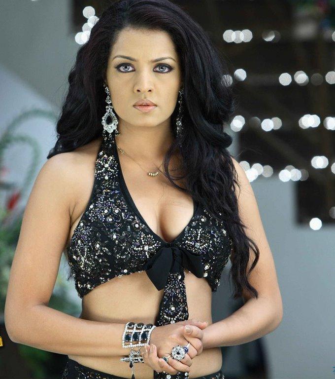 Celina jaitley hot actress