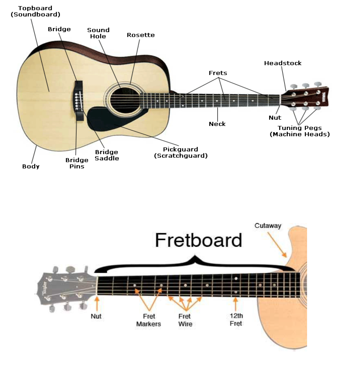 Know Your Guitar
