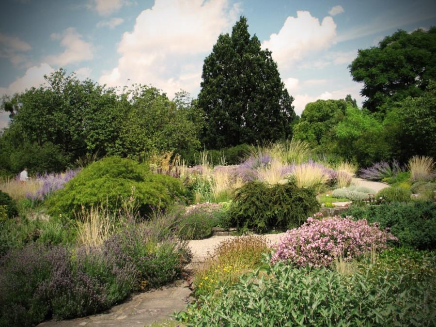 Ogród Botaniczny w Berggarten