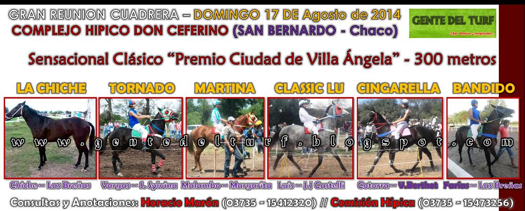 San Bernardo 17-08 Clasico