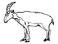 Antelope Kids Coloring Pages