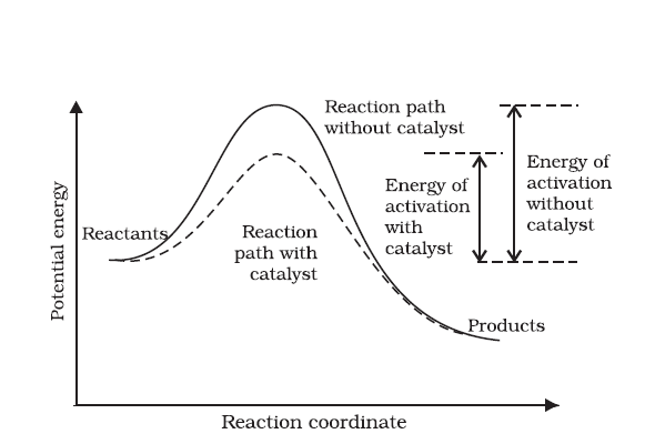 an experiment on limiting reactants the effects of catalysts and finding the rate laws of chemical r Rapid extraction of quantitative kinetic information from variable their limiting rate laws are rate law depends on just two reactants.