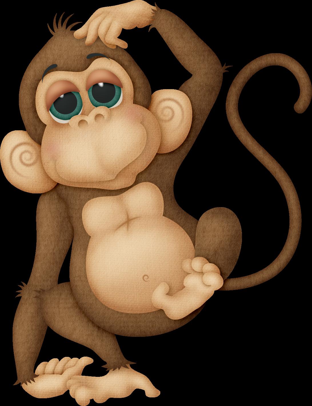 http://2.bp.blogspot.com/-9lvA6XFuzmQ/TroXd7oeoNI/AAAAAAAAAOM/R_oACdFZ6_I/s1600/monkey.png