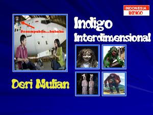 ANAK INDIGO 14 (VERSI DERI MULIAN)