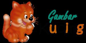 GAMBAR KUCING | GAMBAR KUCING LUCU