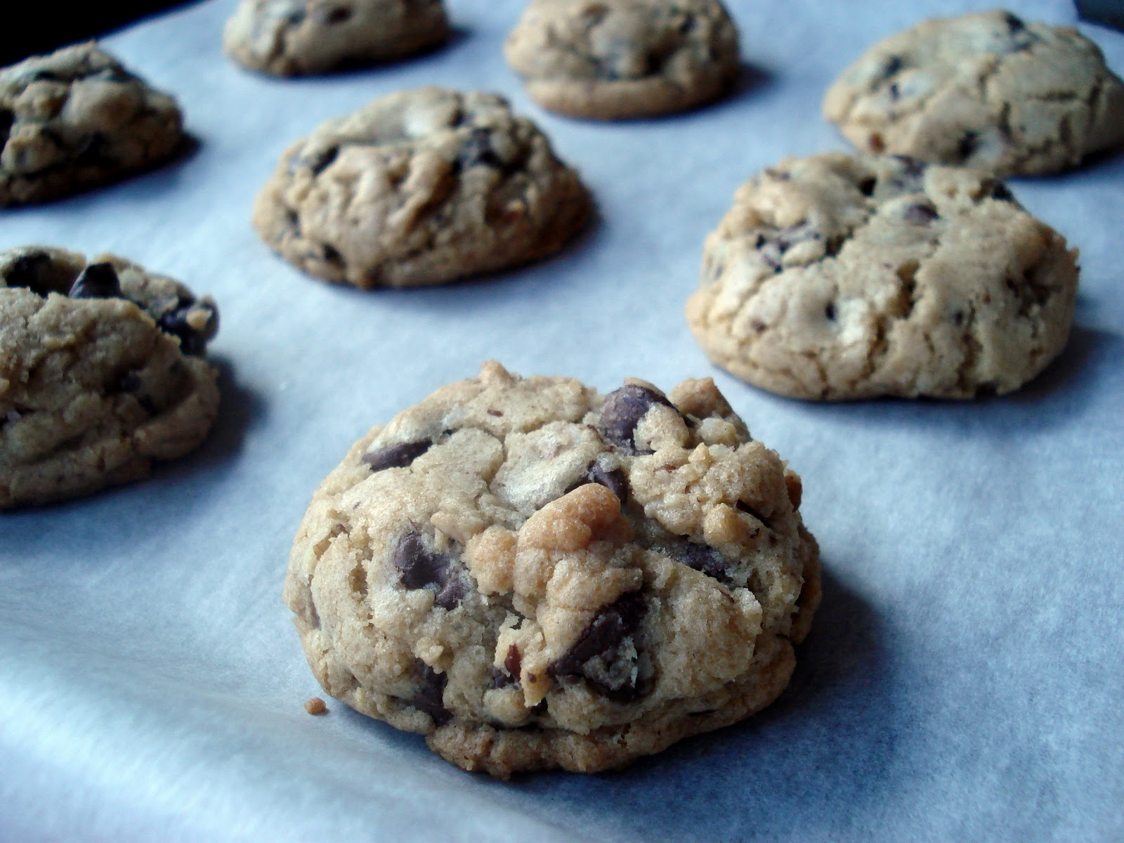 Bakestravaganza: Browned Butter Chocolate Chip Cookies