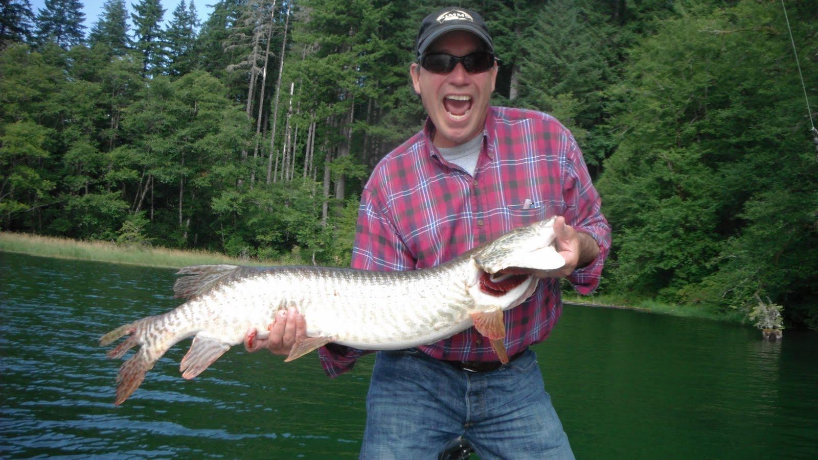 Forever fishing washington state tiger muskie fishing in for Tiger muskie fishing