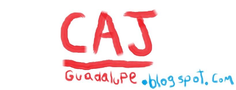 CAJ (Centro de Actividades Juveniles) Guadalupe