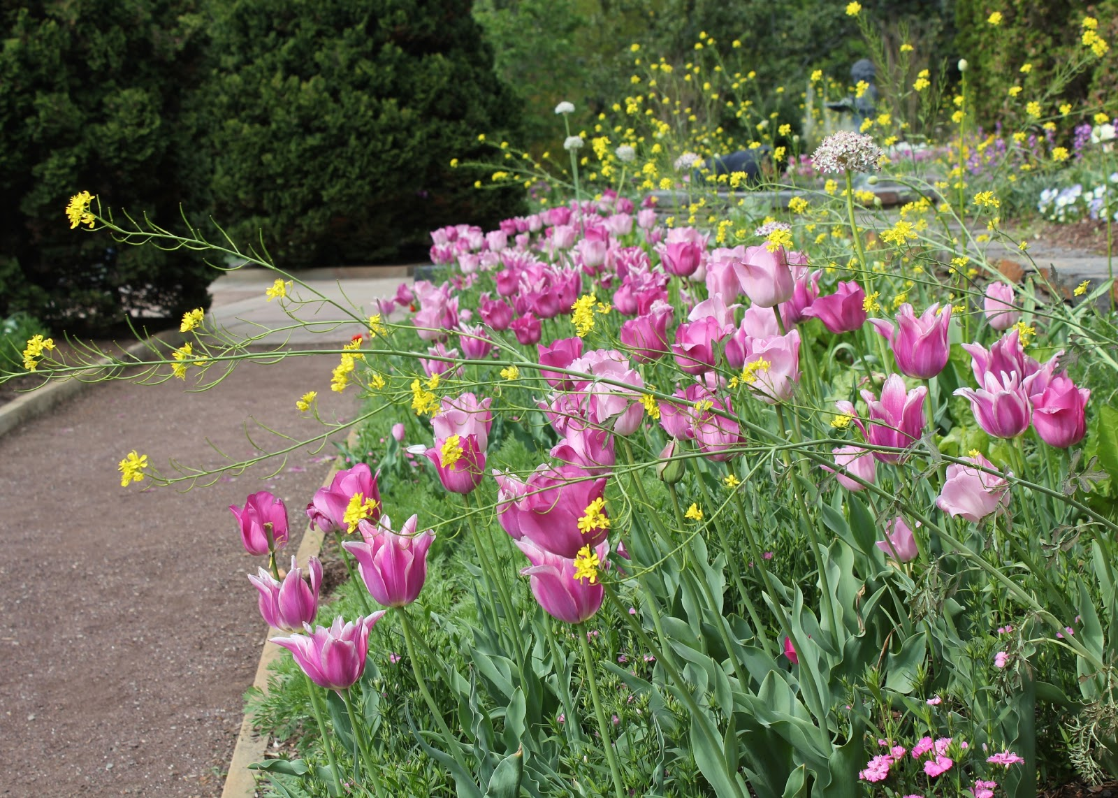 The wildlife garden in the h l blomquist garden of native plants -  Filled With Blooms In All Sorts Of Color Combinations