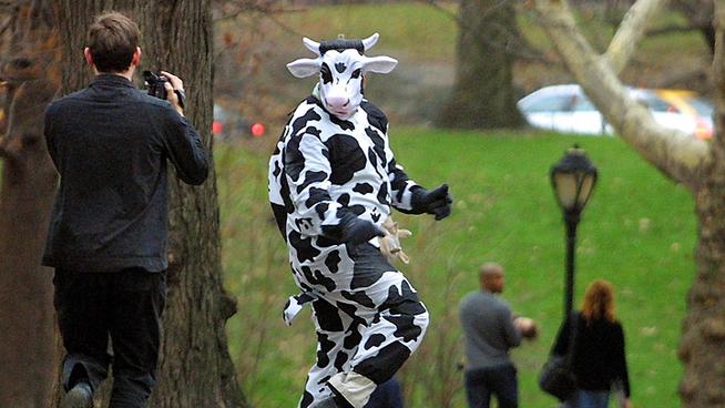 robar leche vestido como vaca Jonathan Payton