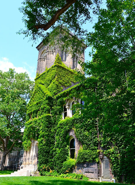 ivy covered buildings toronto ontario university