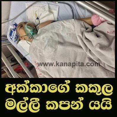 http://www.gossiplanka-hotnews.com/2014/11/sri-lankan-brother-cut-his-sisters-leg.html