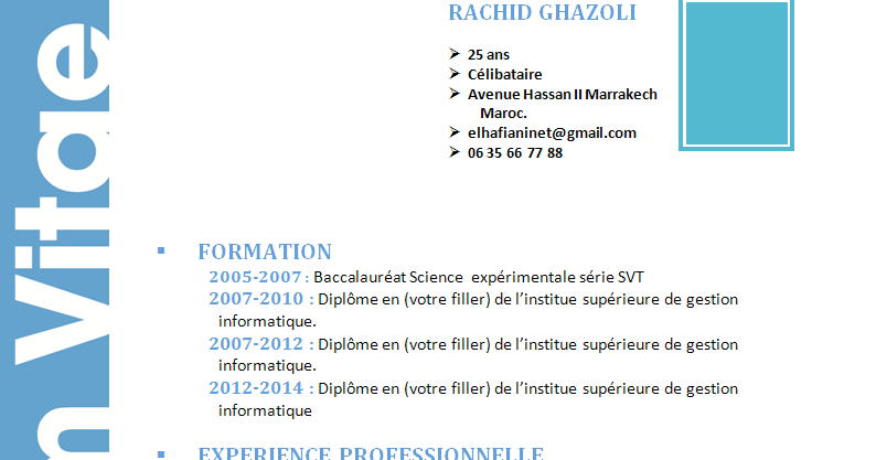 comment faire un cv  cv model originale style simple format word modifialble