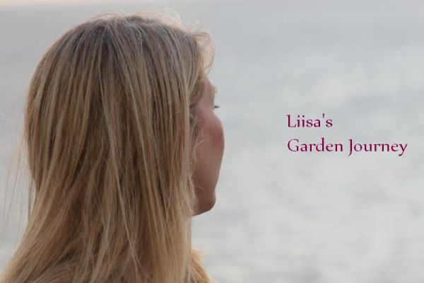 Liisa's Garden Journey