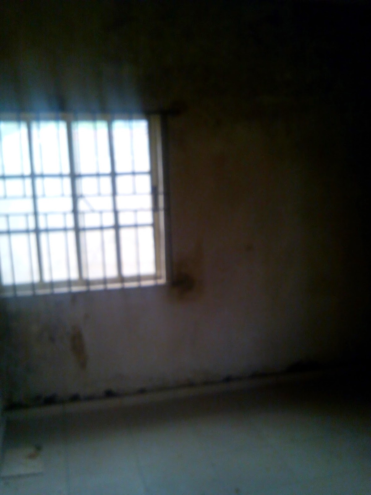 1 bedroom apartment for rent near sango