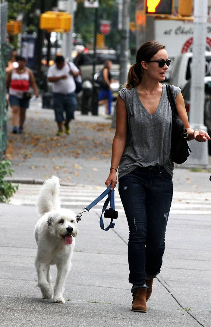 Olivia Wilde in Jeans Walking Dog in NY