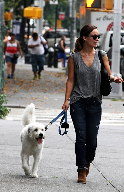 Olivia Wilde in Jeans Walking Dog in NY